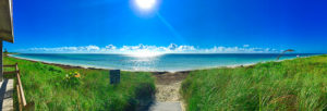 Beach with bright blue water and sky, and green grass